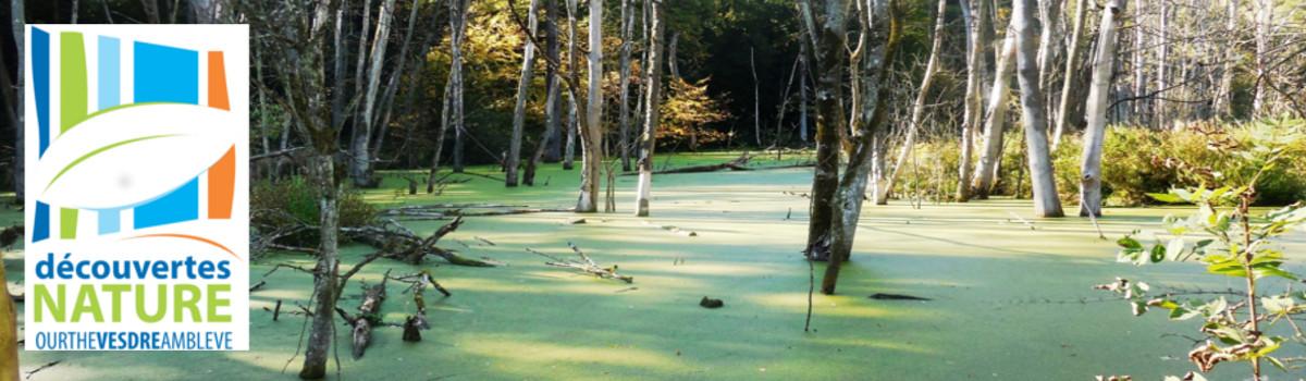 Découvertes Nature et Tourisme Ourthe-Vesdre-Amblève